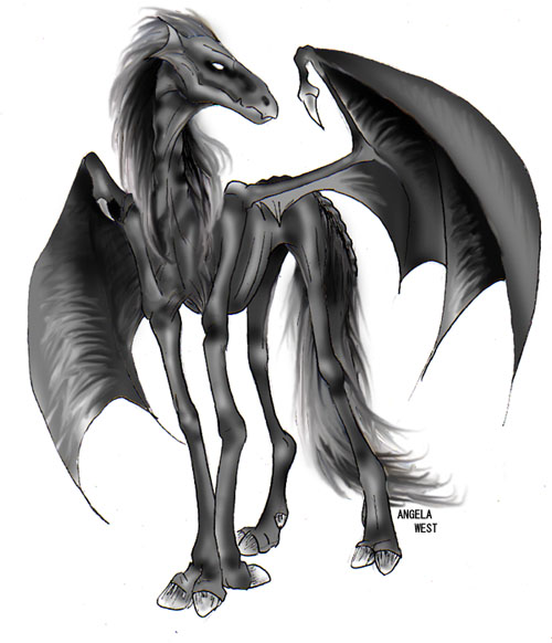 Creative Creatures Thestral1-aw