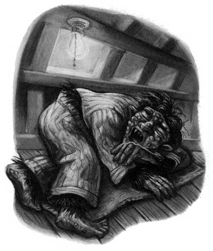 http://www.hp-lexicon.org/images/chapters/dh/dh.c06--ghoul-in-pajamas.jpg