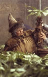 Professor Spout holding up a baby Mandrake, copyright Warner Brothers.