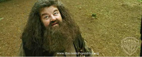 Movie still of Robbie Coltrane as Hagrid.