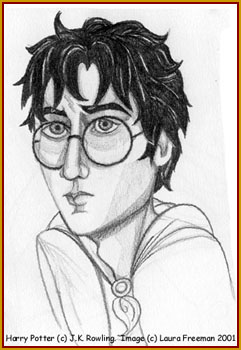 Harry Potter © 2001 by Laura Freeman