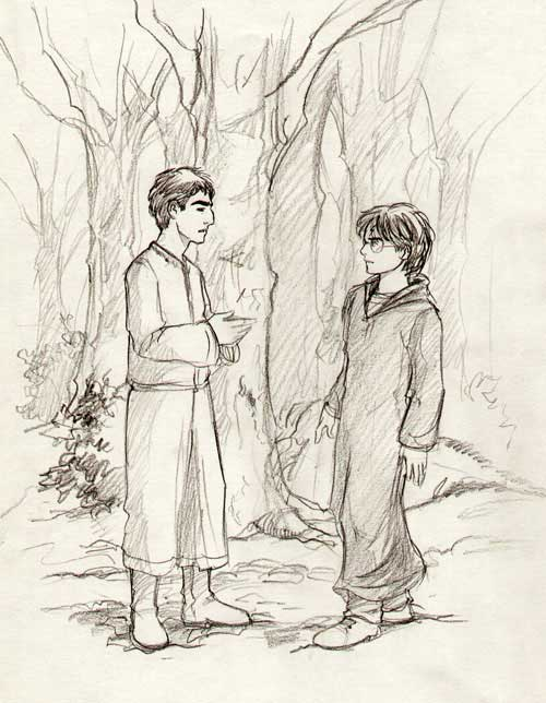 Krum and Harry in the Forest by Marta T.